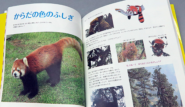 lockon_191122-book3